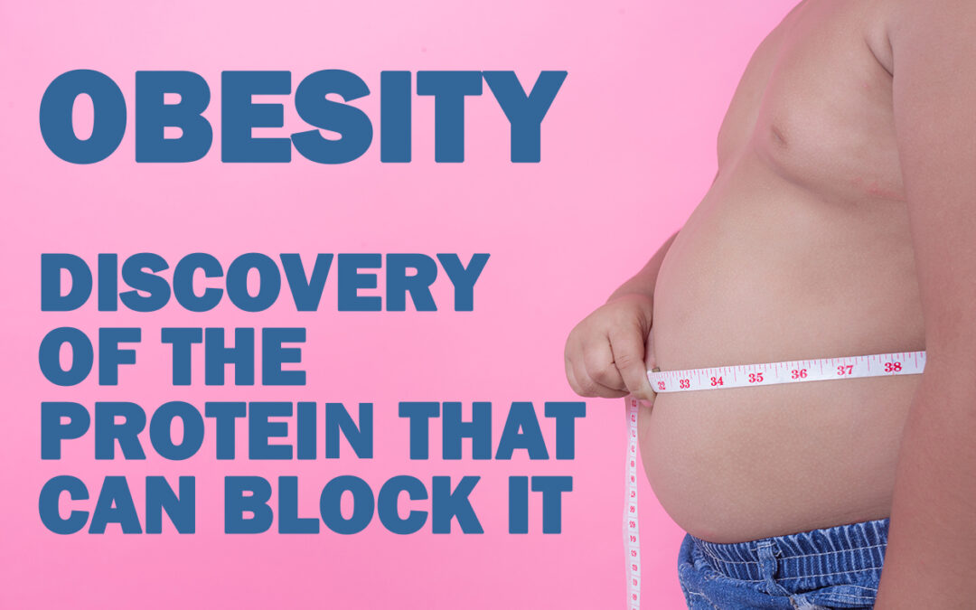 Obesity, discovery of the protein that can block it