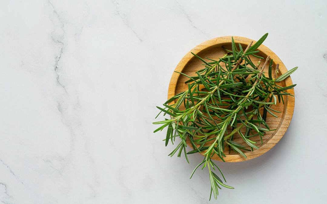 Aromatic Herbs: The Therapeutic Properties of Rosemary